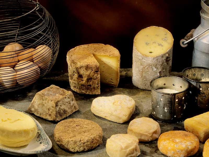 Les fromages de chèvre et de brebis