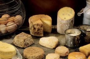 Fromages d'Auvergne de brebis et de chèvre