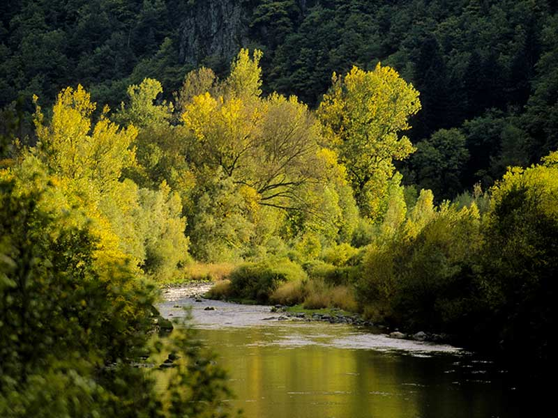 Les Gorges de la Loire sauvage, Pays du Velay, Haute-Loire, Auvergne