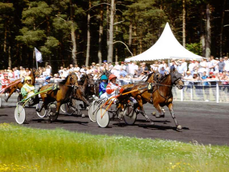 Hippodrome de Lachamps à Jullianges
