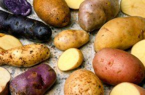 Les pommes de terre de Craponne-sur-Arzon