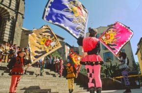 Roi de l'oiseau - Le Puy