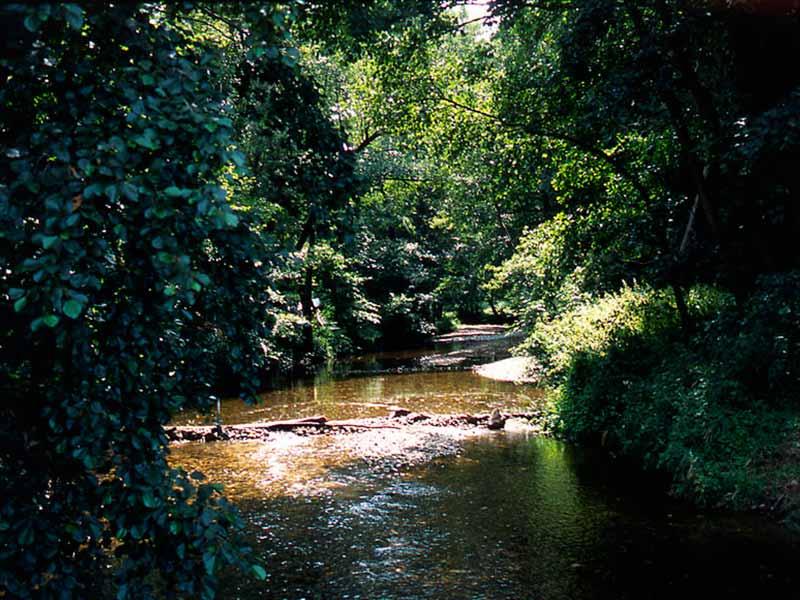La vallée de la Sénouire, affluent de l'Allier, Les Gorges de l'Allier au Pays de Lafayette, Haute-Loire, Auvergne