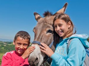 Bouger, A pied, Randonnée avec des ânes, Loueurs d'ânes de bât en Haute-Loire, Auvergne