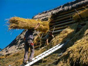 Maisons en toit de chaume de Moudeyres, Haute-Loire, Auvergne