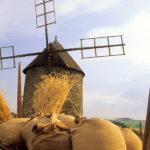 Moulin à vent d'Ally
