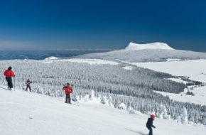 Bouger, Sports d'hiver, Ski Alpin aux Estables, Mézenc, Haute-Loire, Auvergne