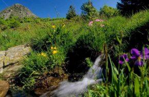 Bouger, A pied, Grandes randonnées, GR®3 – Sentier de la Loire, Haute-Loire, Auvergne