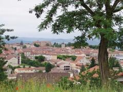 Monistrol-sur-Loire - 2 fleurs