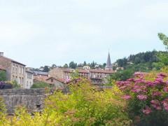 La Séauve-sur-Semène - 1 Fleur