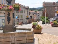 Vorey-sur-Arzon - 1 Fleur