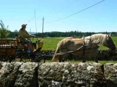 Producteurs fermiers écotouristiques