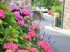 Monistrol-d'Allier – 1 Fleur