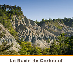 Ravin de Corboeuf