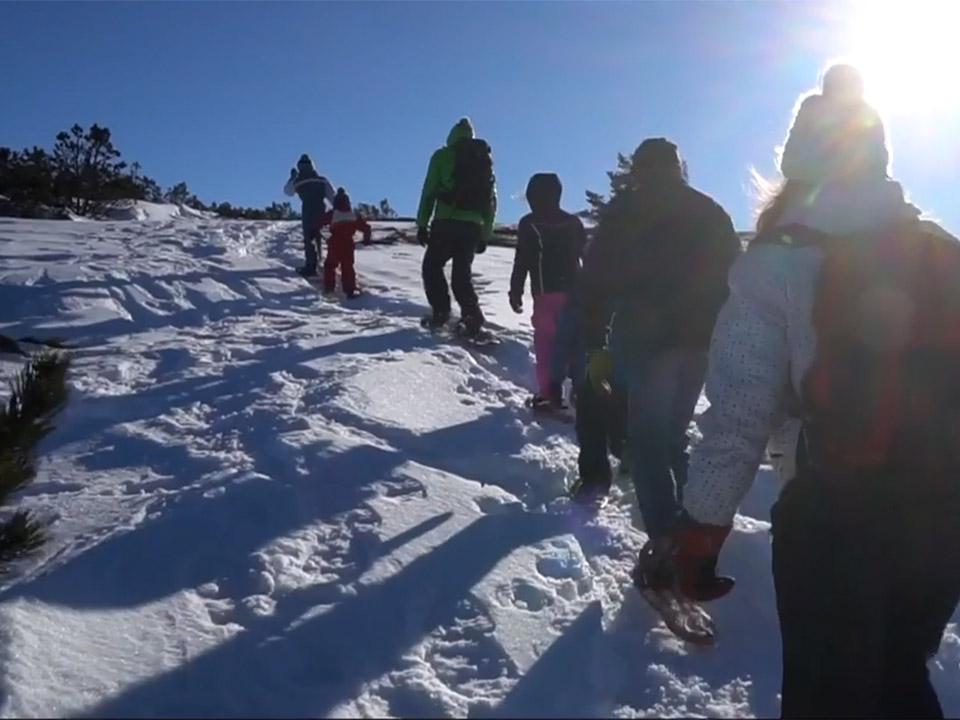 Promenade en raquettes de neige sur le Mont Mézenc en Haute-Loire
