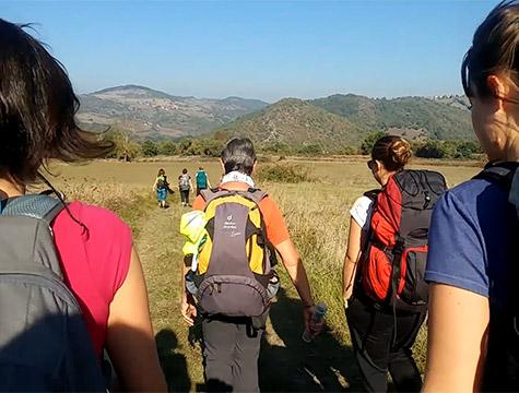 Groupe de randonneurs sur l'Altiligérienne en Auvergne