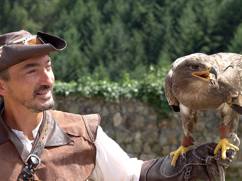 Nicolas le fauconnier