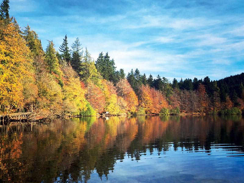 Les automnes canadiens au Lac du Bouchet