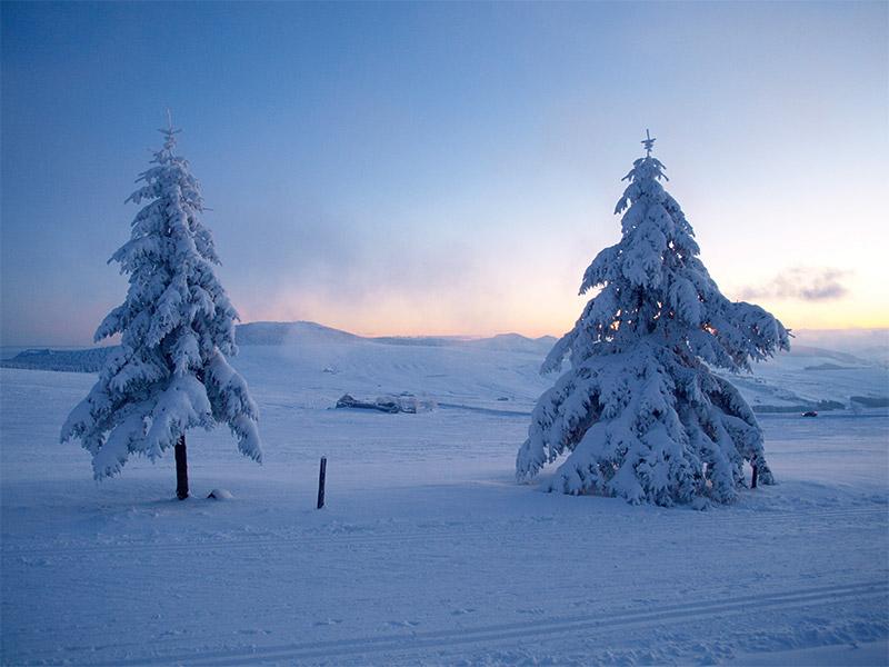 Les étendues enneigées de la Laponie sur le plateau du Mézenc