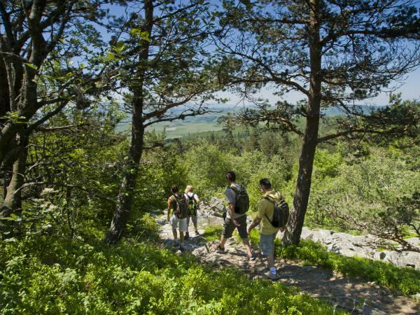 sentier de Bonas au Pic du Lizieux