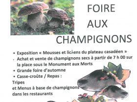 EVE_Foire aux champignons_affiche 2021