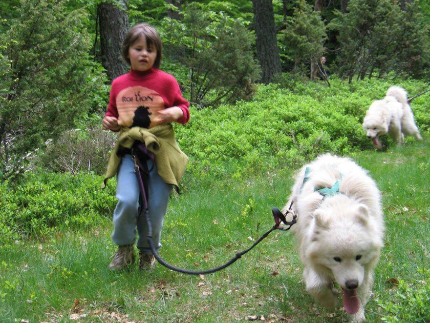 Promenade en cani-rando