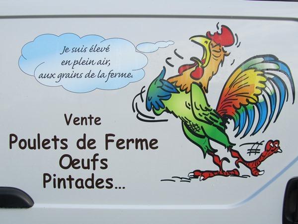 de-ameida-poulet-1