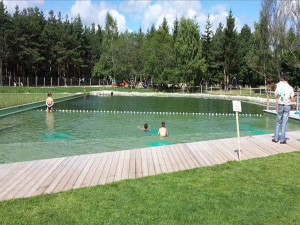 Plan d 39 eau biologique auvergne vacances for Plan piscine naturelle