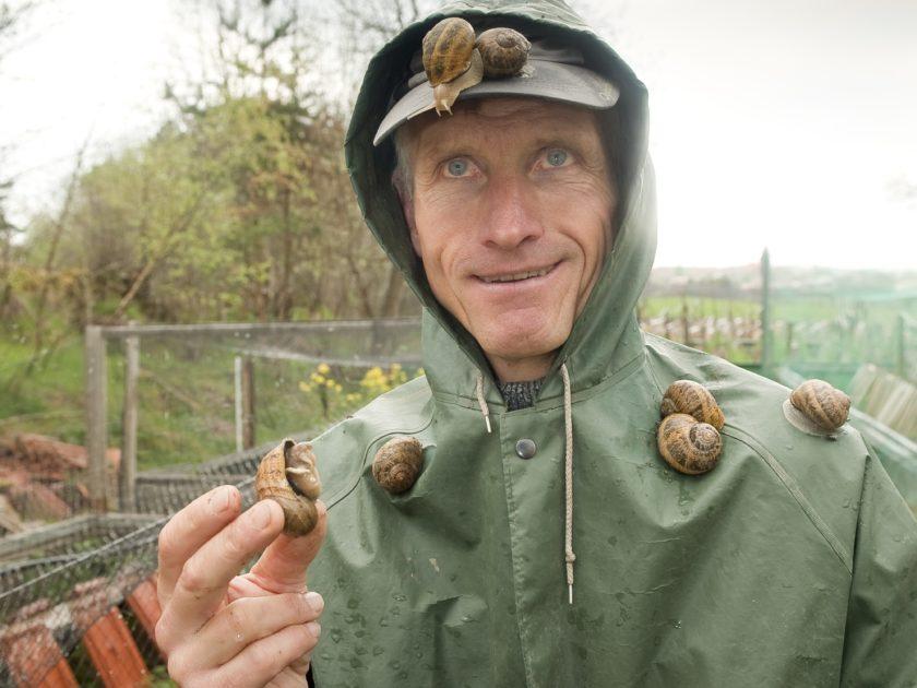 Visites de la maison de l 39 escargot activit s culturelles auvergne auvergne vacances - La maison des escargots ...