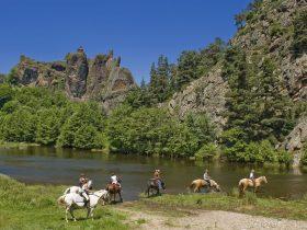SEJ_Les Sources de a Loire à Cheval_chevaux dans l'eau