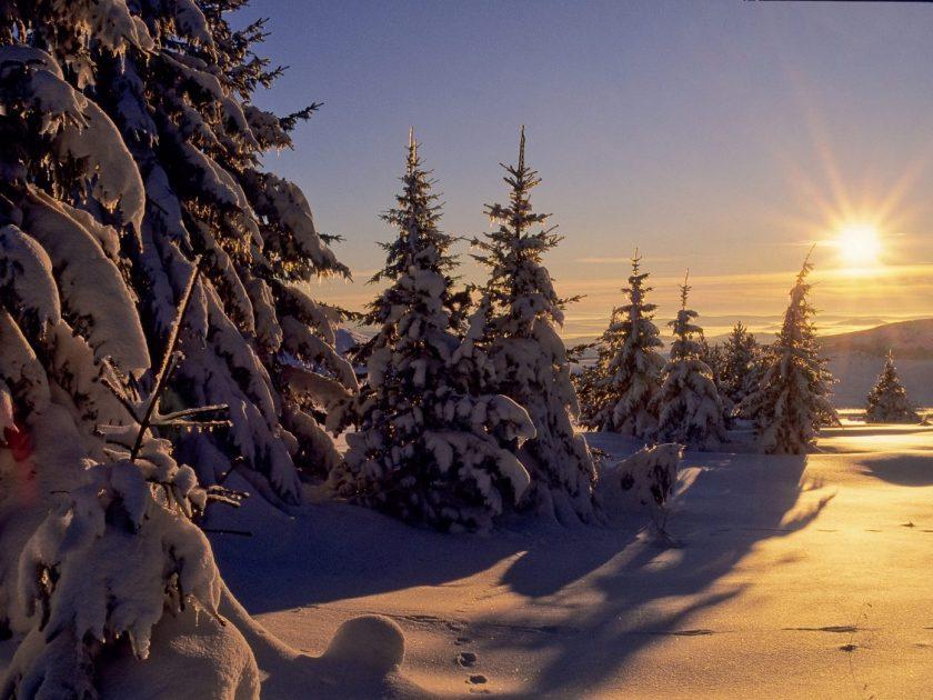 SEJ_Reveillon Fin d'Annee-Sejour Raquette, Ski de Fond, Biathlon_Mézenc sous la neige