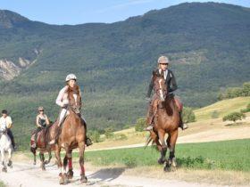 ACT_Randonnée Equestre