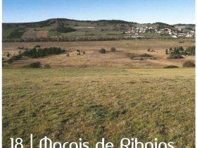 Marais de Ribains