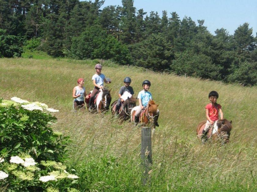 Balades à poneys
