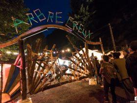 festival de l'arbre creux