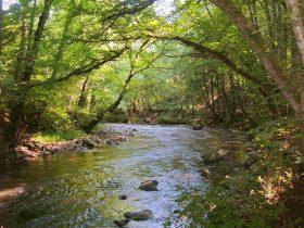 EQU_Parcours de pêche sans tuer sur la rivière de la Semène
