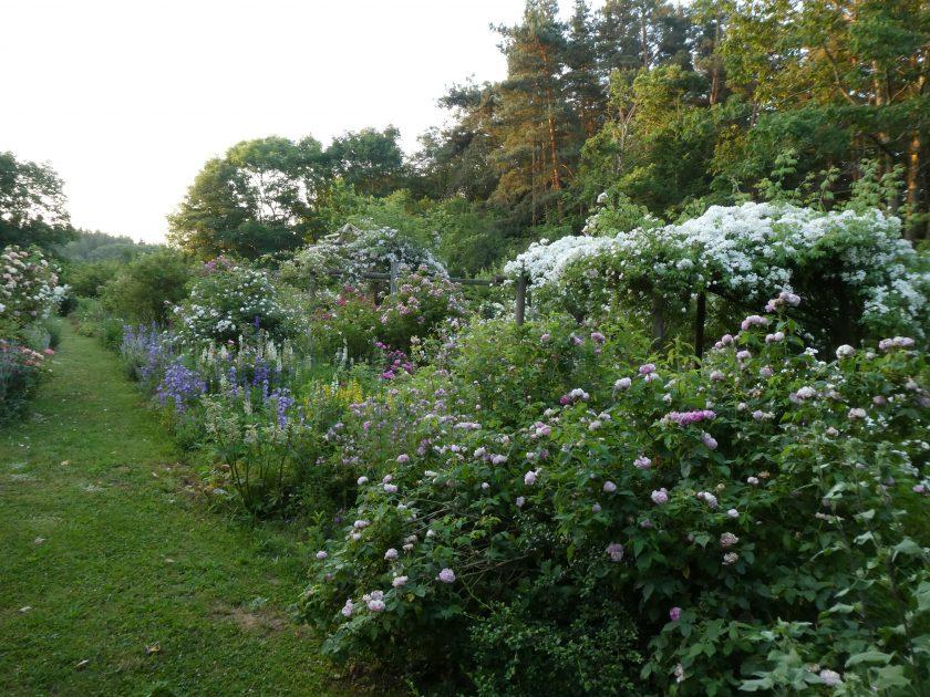 EVE_jardinauxgouttesdeveyrines_monistrol