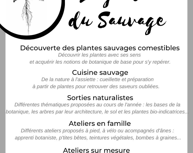 act_goutdusauvage_solignac