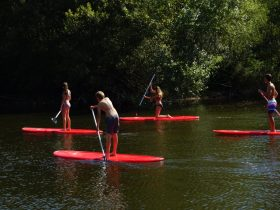 act_location paddle_basenbasset