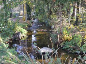 Parcours pêche sans tuer du piat _Monistrol sur Loire