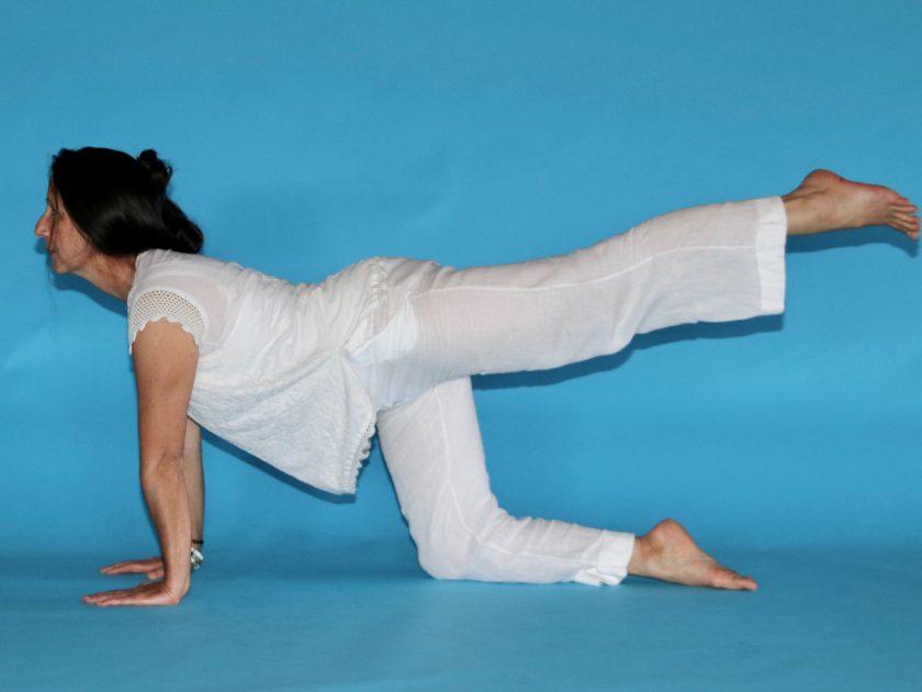 EQUI-posture2