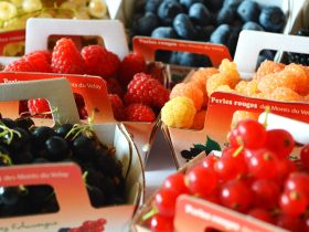 G.I.E. Fruits rouges du Velay