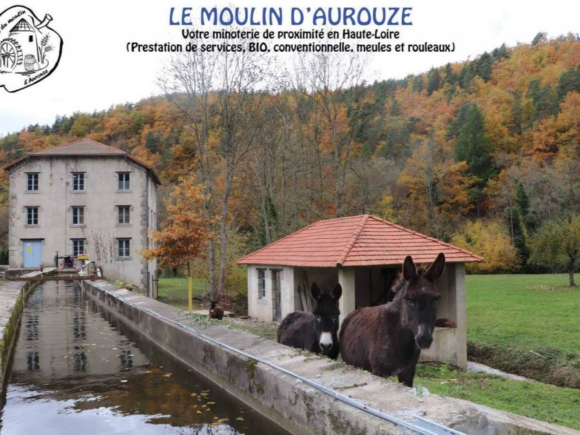 LeMoulin