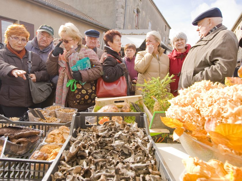 Fête des champignons