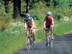 Circuit vélo route : mais c'est bien sûr: gastronomie oblige !