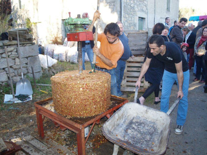 EVE_Fête du cidre_Pressoir fruit bis