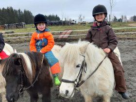 ACT_Cours d'équitation_la Cavalerie du Lac_cours enfants