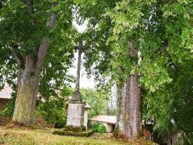 EQUI_PR 103 – Folgoux et l'arboretum_croix
