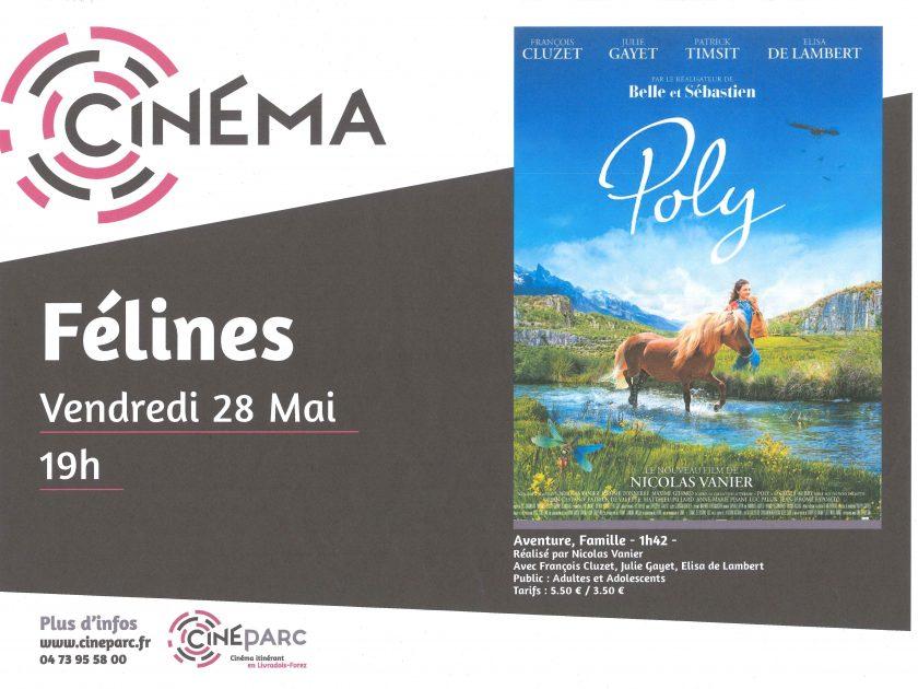 EVE_séance de cinéma Cinéparc_Poly